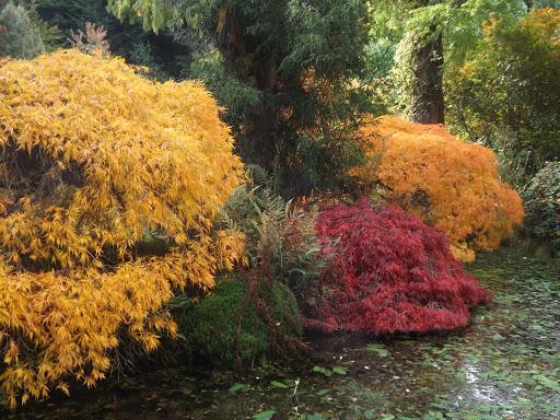 Gondremer à l'automne
