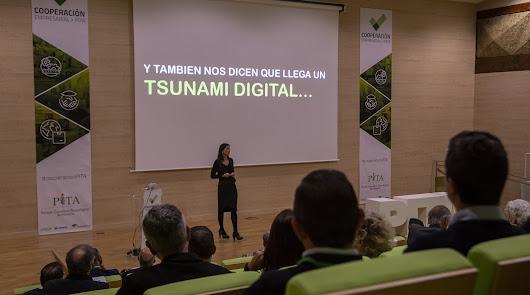 Transformación digital; el camino hacia la economía del futuro