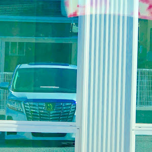 アルファード AGH30W SCののカスタム事例画像 Yuri●🎀●ファード♡さんの2018年10月09日12:27の投稿