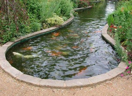 Best fish pond designs android apps on google play for Koi pond shapes