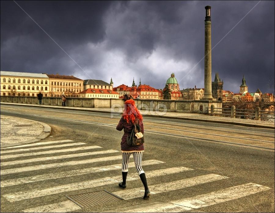zebra by Irena Brozova - City,  Street & Park  Street Scenes ( prague )