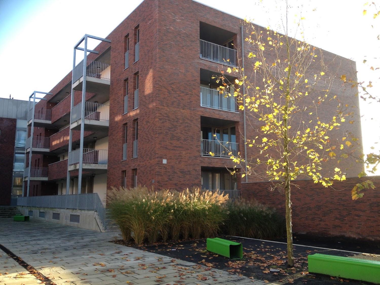 De groene Rua zitbanken uit de collectie van Larus Design in het project Brouwerij De Neve te Dilbeek naar een ontwerp van Wim Van Mello