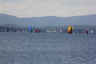 Photo: Year 2 Day 230 - Sailing Boats at Belmont