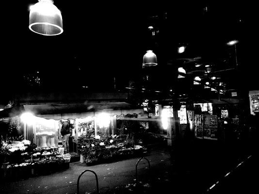 Milano vista dal vetro di un tram di Toadphoto