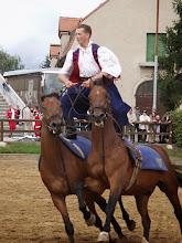 Photo: Kosakenritt bei der Hengstparade Moritzburg