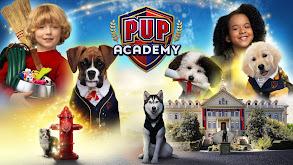 Pup Academy thumbnail