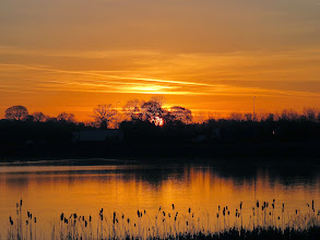 Photo: Priorslee Lake and again. (Ed Wilson)