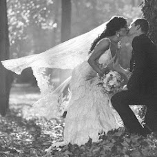 Wedding photographer Aleksandar Stojanovic (stalexphotograp). Photo of 20.05.2015