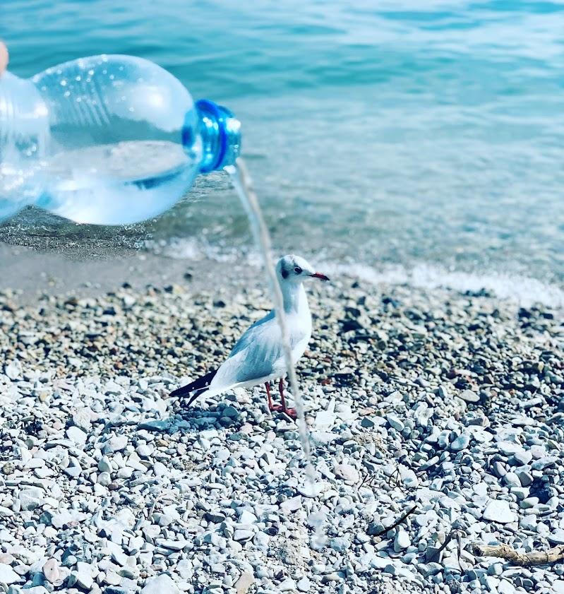 L'ultimo caldo Lago di Garda ....... SETTEMBRE 2019 di Mariachiara88