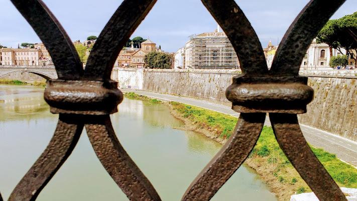 Roma in gabbia di u2tommy