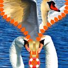 Swan Zipper Lock Screen icon