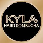 Logo of Kyla Hard Hibiscus Lime Kombucha