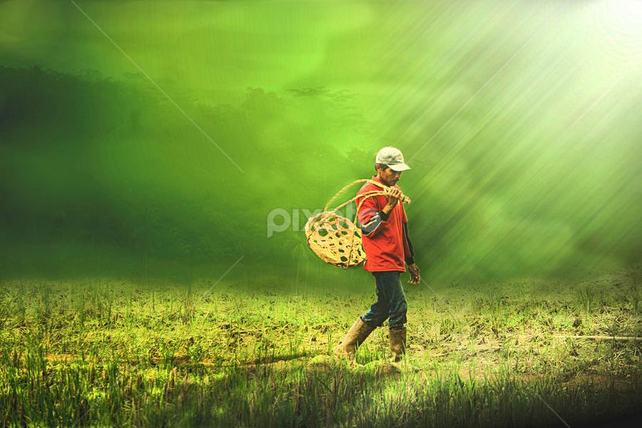 Pencari RUmput by Ganang Sujarwo - Digital Art People