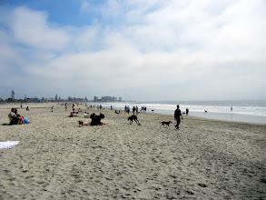Photo: On the dog beach on Coronado Island