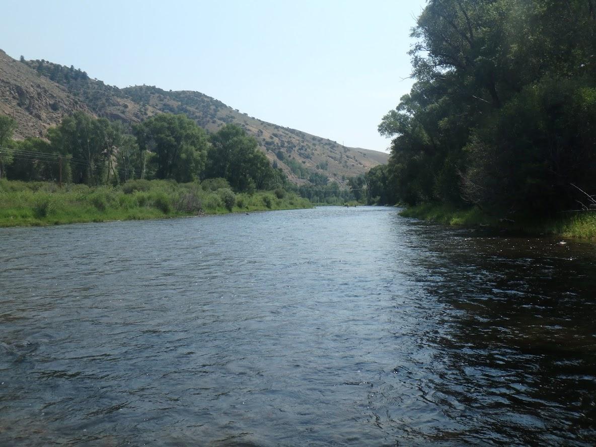 Colorado River | Dave Weller's Fly Fishing Blog