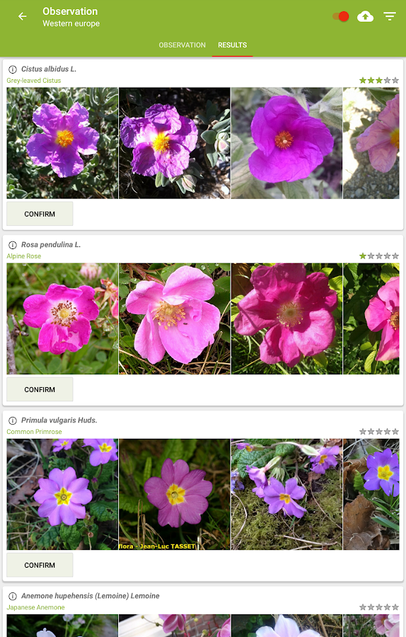 Flowering House Plants Identification plantnet plant identification - android apps on google play