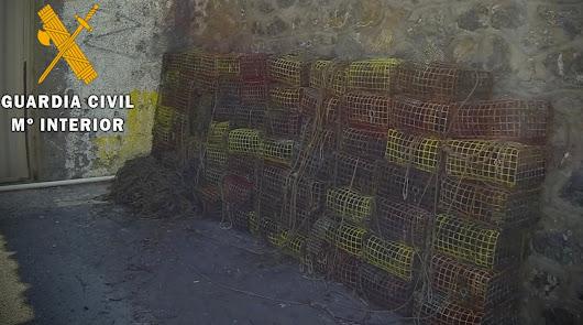 Retiran 70 trampas de pesca ilegal: destruyen pradera de posidonia en Retamar