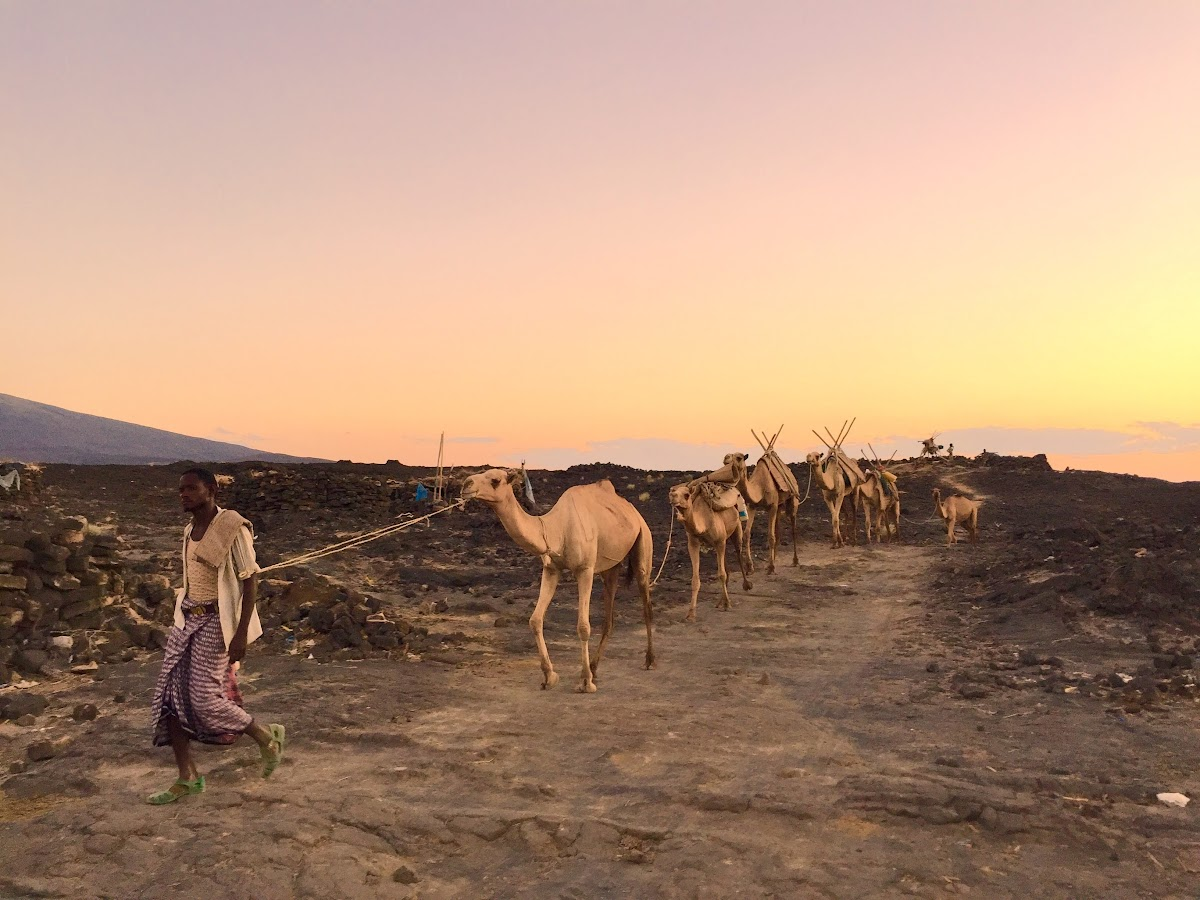 Treks Mountains in Africa // Ethiopia Erta Ale Volcano Danakil Depression Camels 197TravelStamps