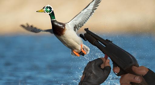 Duck Hunting : Duck Hunter Duck Hunt android2mod screenshots 3