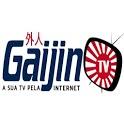 GAIJIN TV icon