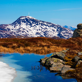Reinsfjellet by Morten Gustavsen - Landscapes Mountains & Hills