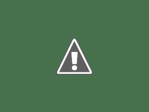 Photo: Walking in a winter wonderland.
