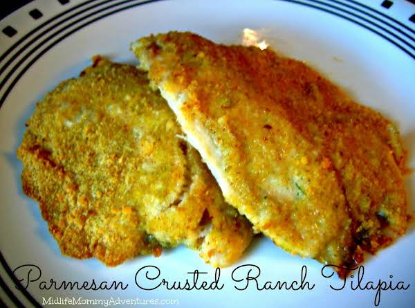 Parmesan Crusted Ranch Tilapia {baked-not-fried}
