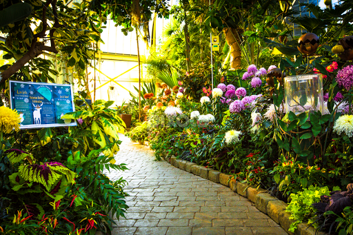 Flower Garden Path garden path illuminated in the afternoon sun | flower gardens