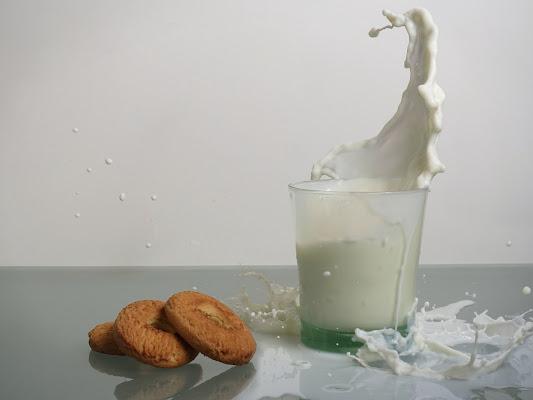 Got milk? di Stefano Ferrari