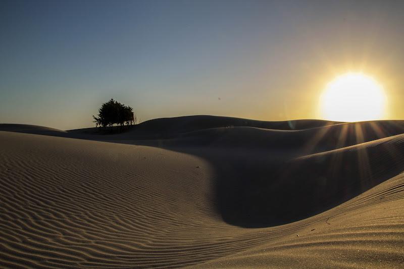 Italian Desert di claudio1984
