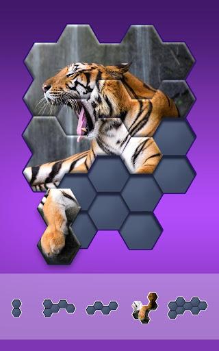 Hexa Jigsaw Puzzleu2122  screenshots 11