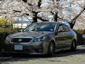 フーガ y50 type Sのカスタム事例画像 ふなぴぃさんの2020年04月05日16:23の投稿