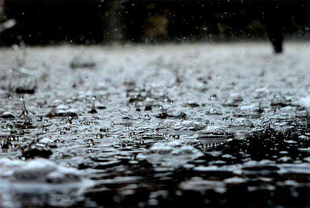 School bus, woman trapped as heavy downpours hit Joburg - TimesLIVE