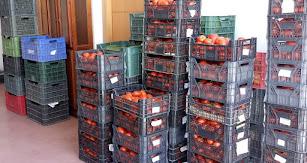Verduras donadas por el ciudadano anónimo.