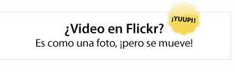 flickrvideokm0