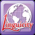 Linguicity2 icon