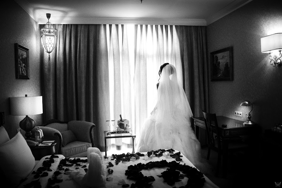 Wedding photographer Aleksandr Vachekin (Alaks). Photo of 18.11.2015
