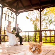 Wedding photographer Vlada Chizhevskaya (Chizh). Photo of 17.09.2017