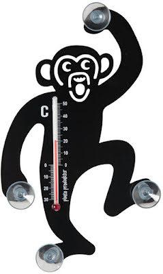 Termometer Apa
