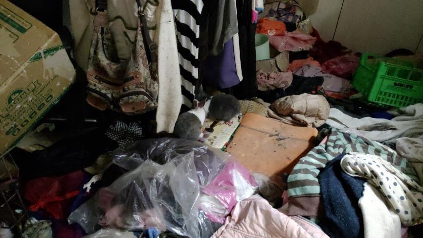 一張含有 室內, 散亂, 項目, 衣物 的圖片  自動產生的描述