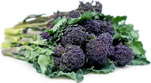 Purple Broccoli Information and Facts