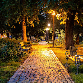 A peaceful park for resting our tired souls by Dražen Škrinjarić - City,  Street & Park  City Parks ( europe, pathway, bench, park, grass, colorful, green, croatia, velika gorica, zagreb, yellow, lamps, tree, color, outdoors, lamp, path, trees, summer )