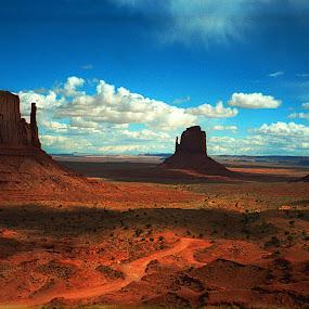 Monument Valley by Cornelis Cornelissen - Landscapes Deserts ( monument valley, orange, arizona, valley, landscape, rocks )