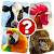 Memory Game: Animals file APK Free for PC, smart TV Download