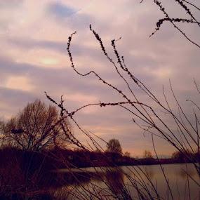 Evening Calm by Nat Bolfan-Stosic - Uncategorized All Uncategorized ( calm, sunset, peace, fishlake, evening )