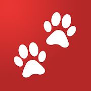 doglog track your pets daily activities