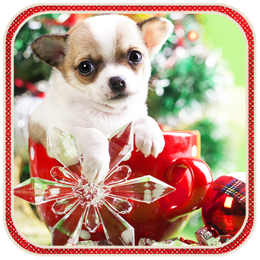Christmas Dog live wallpaper