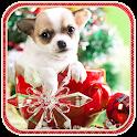 Christmas Dog live wallpaper icon
