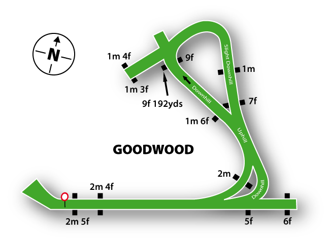 Goodwood Course Guide   At The Races