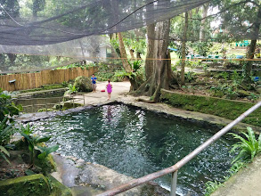 Photo: Ardent Hot Spring!